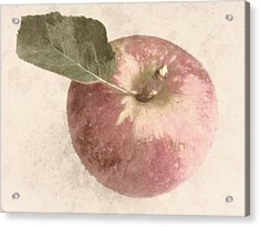 Perfect Apple Acrylic Print by Photographic Arts And Design Studio