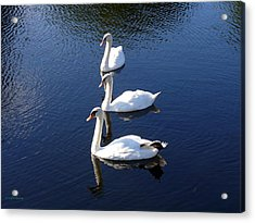 Acrylic Print featuring the photograph Perfect Family Gathering by Lingfai Leung