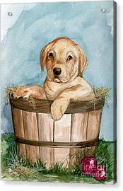 Acrylic Print featuring the painting Perfect Fit by Nancy Patterson