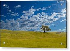 Perfect Landscape Acrylic Print