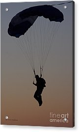 Perfect Sunset Landing Acrylic Print by Tannis  Baldwin