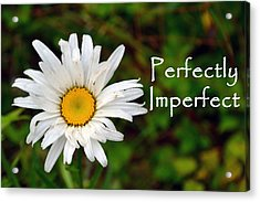 Perfectly Imperfect Daisy Flower Acrylic Print