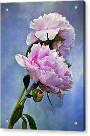 Perfume And Powdery Pastels Acrylic Print by Theresa Tahara