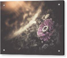 Perfumed Light Acrylic Print