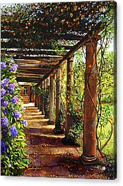 Pergola Walkway Acrylic Print by David Lloyd Glover