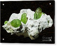 Peridot Crystals Acrylic Print by Millard H. Sharp