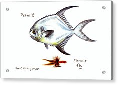 Permit And Permit Fly Acrylic Print