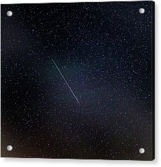 Perseid Meteor Trail Acrylic Print
