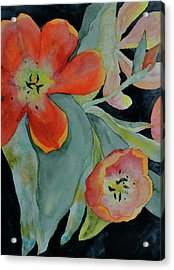 Persevere Acrylic Print by Beverley Harper Tinsley