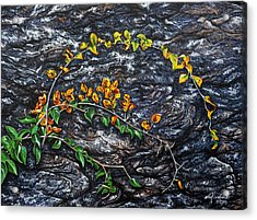 Acrylic Print featuring the painting Persistence by Craig T Burgwardt