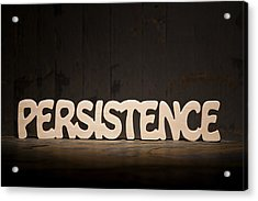 Persistence Acrylic Print by Donald  Erickson
