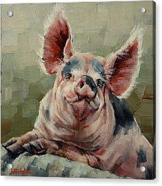 Personality Pig Acrylic Print