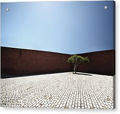 Perspective View On Square With Tree Acrylic Print by Stanislaw Pytel