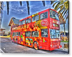 Perth Tour Bus Acrylic Print by Geraldine Alexander