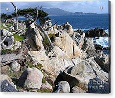 Pescadero Point Acrylic Print