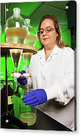 Pesticide Research Acrylic Print by Peggy Greb/us Department Of Agriculture