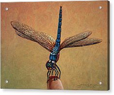 Pet Dragonfly Acrylic Print