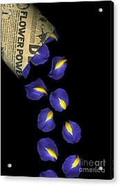 Petal Chips Acrylic Print