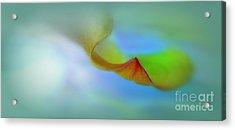 Leaf Acrylic Print by Irina Hays