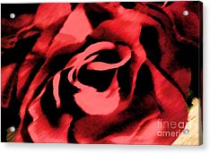 Petals Of Velvetty Red Acrylic Print by Catherine Lott