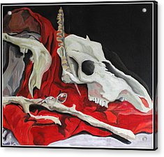 Pete The Skull Acrylic Print by Kip Krause