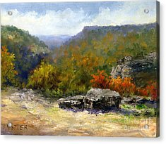Petit Jean View From Mather Lodge Acrylic Print by Virginia Potter