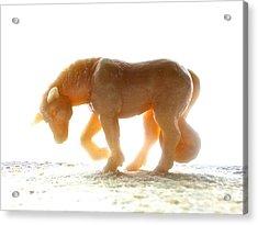 Petite Licorne Doree Baignee De Lumiere Acrylic Print