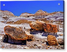 Acrylic Print featuring the photograph Petrified Forest - Painted Desert by Bob and Nadine Johnston