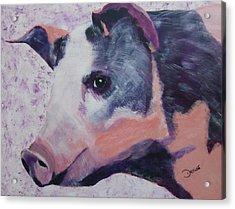 Petunia Pig Acrylic Print