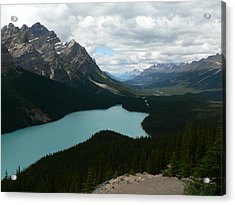 Acrylic Print featuring the photograph Peyote Lake In Banff Alberta by Laurel Best