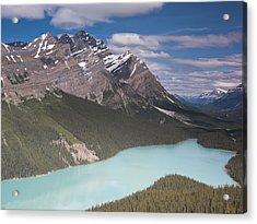 Peyto Lake And Caldron Peak Acrylic Print by Richard Berry