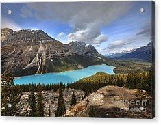 Peyto Lake Banff Acrylic Print by Dan Jurak
