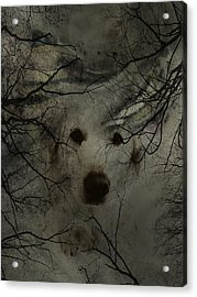 Phantom Dog Acrylic Print by Shirley Sirois