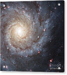 Phantom Galaxy M74 Acrylic Print