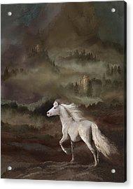 Storybook Stallion Acrylic Print by Melinda Hughes-Berland