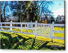 Phelps Cemetery  Acrylic Print by Mary Carol Story