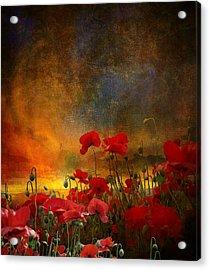 Phil Acrylic Print by Jeff Burgess