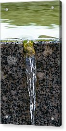 Phone Case - Cold And Clear Water Acrylic Print by Alexander Senin