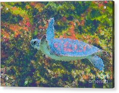 Photo Painting Of Sea Turtle Acrylic Print by Dan Friend
