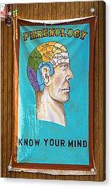 Phrenology Acrylic Print by Garry Gay