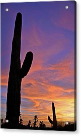 Phx July 2014 Sunsets 3 Acrylic Print