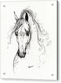 Piaff Polish Arabian Horse Drawing Acrylic Print by Angel  Tarantella