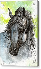 Piaff Polish Arabian Horse Watercolor  Painting 1 Acrylic Print by Angel  Tarantella