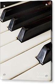 Piano Keys Acrylic Print by Jelena Jovanovic
