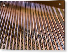 Piano Strings Acrylic Print by Chris McCown