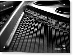 Piano Strings Acrylic Print by Tim Hester