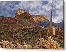 Picacho Peak Acrylic Print by Bob Pardue