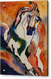 Picasso Acrylic Print by Nancy Gebhardt