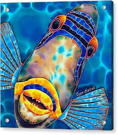 Picasso Triggerfish Acrylic Print