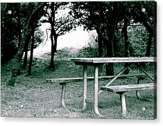 Picnic Blues  Acrylic Print by Sheldon Blackwell